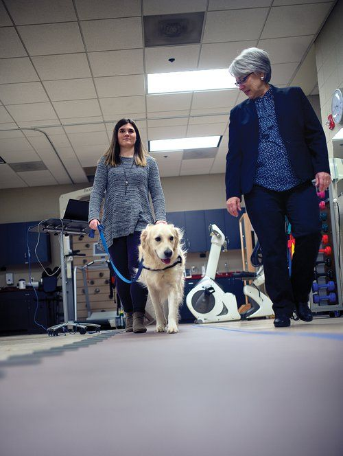 The University of North Georgia is trying to build a better harness for guide dogs
