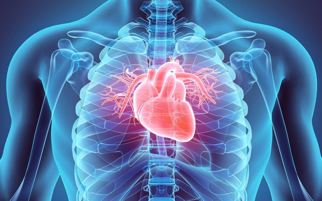 Test your knowledge of the 2019 AHA guidelines for cardiac care
